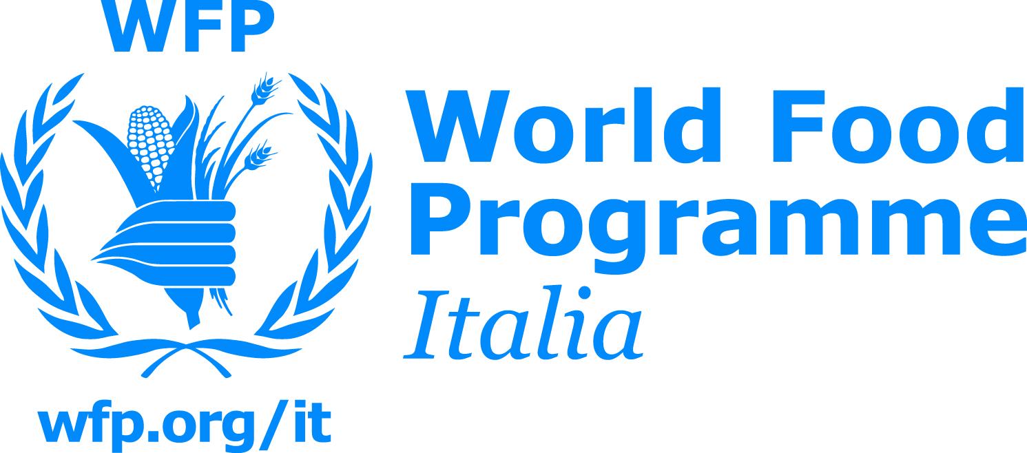 WFP_Italia_Standard_Blue_PANTONE3005
